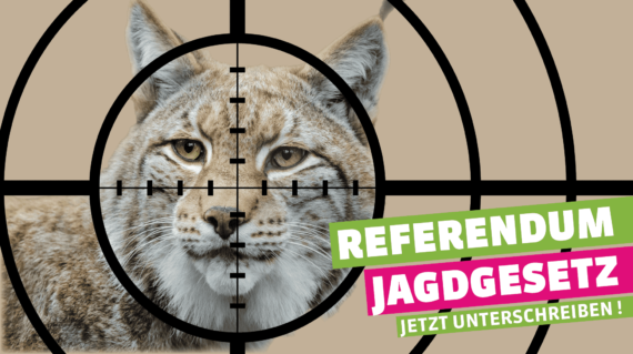 Nein zum Jagdgesetz